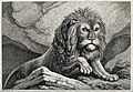 A large lion ascending a hill. Etching by W-S Howitt after h Wellcome V0021505.jpg