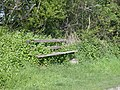 A little-used bench - geograph.org.uk - 791982.jpg