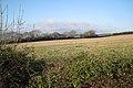 A parish boundary hedgerow - geograph.org.uk - 1624910.jpg