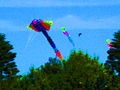 Above the trees - Festival of the Winds 2010.jpg