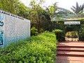 Acharya Jagadish Chandra Bose Indian Botanic Garden - Howrah 2011-03-20 2063.JPG