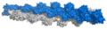 Actin filament atomic model.png