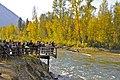 Adam's River Viewing Platform - panoramio.jpg