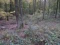 Aitzenbach Graben vor Dammweg.jpg