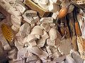 Alabastro z08.JPG