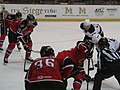 Albany Devils vs. Portland Pirates - December 28, 2013 (11622550264).jpg