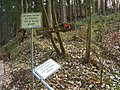 Albersweiler, Germany - panoramio (6).jpg
