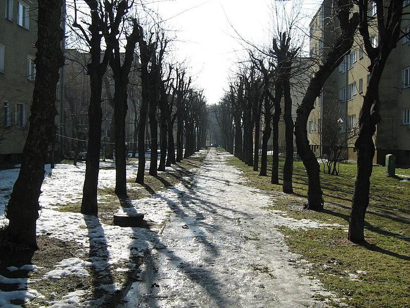File:Alley - panoramio - Bartek-U.jpg
