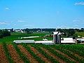 America's Dairyland - panoramio.jpg