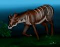 Ampelomeryx.png