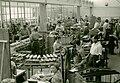 Angulus-Produktionshalle.jpg