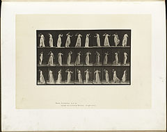 Animal locomotion. Plate 194 (Boston Public Library).jpg