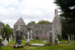 Annaghdown Cathedral NW 2010 09 12.jpg