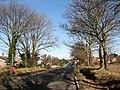 Approaching Little Plumstead - geograph.org.uk - 685800.jpg