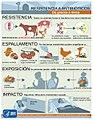 Ar-infographic-950px-gl.jpg