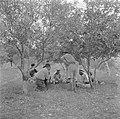 Arabische mannen wachtende in de open lucht bij een polikliniek in gesprek met m, Bestanddeelnr 255-0944.jpg