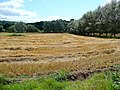 Arable land by the Wye 1 - geograph.org.uk - 1456319.jpg
