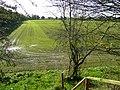 Arable land near Cotonwood - geograph.org.uk - 1024460.jpg