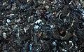 Arsenopyrite (Panasqueira, Portugal) (cropped).jpg