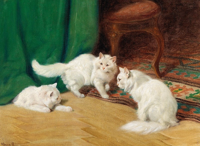 File:Arthur Heyer - Conversation amongst Cats,.jpg