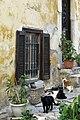 Atenas, varios 19.jpg