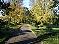 Autumn in Appley Park Ryde. - geograph.org.uk - 308696.jpg