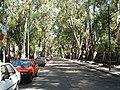 Av. Wernicke, Ciudad Jardín, Buenos Aires, Oct-04 - panoramio.jpg