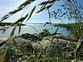Badestelle Usedom - panoramio.jpg