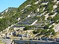 Bakarac Croatia 2010 0728 01.JPG