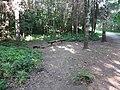 Baltupiai, Vilnius, Lithuania - panoramio (85).jpg