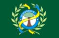 Bandeira ulianopolis.png