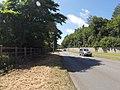 Bangor, UK - panoramio (251).jpg