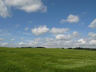 Beowa - A field of barley in England
