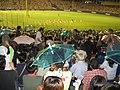 Baseball - parapluies et pompom girls (1445637781).jpg