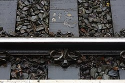 Baseplated rail at Birkenhead Central.jpg