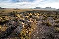 Basin and Range National Monument (21422626250).jpg