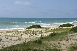 Beach of Seignosse.jpg