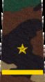Belarus MIA—10 Junior Lieutenant rank insignia (Camouflage).png