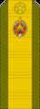 Belarus MIA—13 Master Sergeant rank insignia (Olive)—SR.png