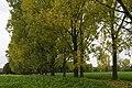 Belgium al die kleurtjes (22768664771).jpg