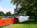 Below Hurley Lock - geograph.org.uk - 523235.jpg