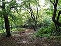 Bentley Priory Heriot Wood.jpg