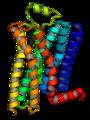 Beta-2-adrenergic-receptor.png