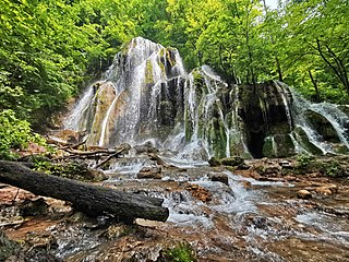 Ancient and Primeval Beech Forests of the Carpathians and Other Regions of Europe UNESCO world heritage site