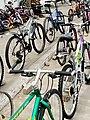 Bicycle 12.jpg