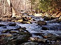 Big Hunting Creek P2060012.jpg