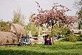 Biking near bega in Timisoara.jpg