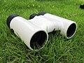 Binoculars2.jpg