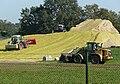 Biomassehaufen Biogasanlage.jpg