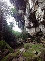 Bird Cave in Maros (2).jpg